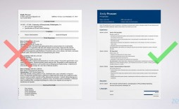 005 Dreaded Entry Level Resume Template Google Doc Example  Docs