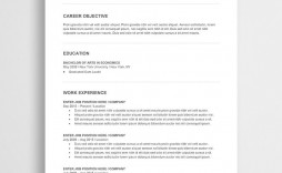 005 Excellent Entry Level Resume Template Word Download Design