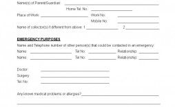 005 Excellent Medical Consent Form Template High Definition  Templates Free