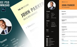 005 Excellent Photoshop Resume Template Free Download Highest Quality  Creative Cv Psd