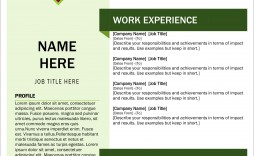 005 Exceptional Download Resume Template Word 2007 High Def