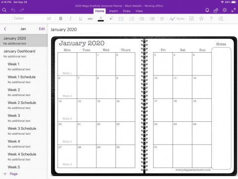 005 Exceptional Onenote Project Management Template Free Sample  Download480