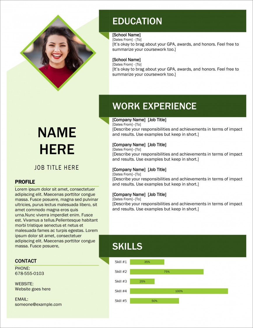 Resume Template Microsoft Word 2007 from www.addictionary.org