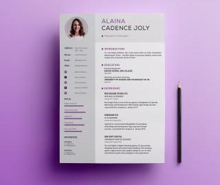 005 Impressive Professional Resume Template 2018 Free Download Idea 320