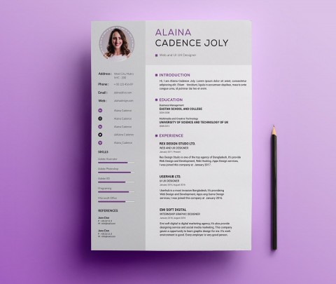 005 Impressive Professional Resume Template 2018 Free Download Idea 480