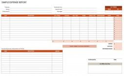 005 Impressive Travel Expense Report Template Photo  Google Sheet Free Form Pdf