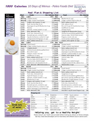 005 Magnificent Sample 1800 Calorie Meal Plan Pdf Photo 360