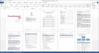 005 Marvelou Change Management Plan Template Idea 320