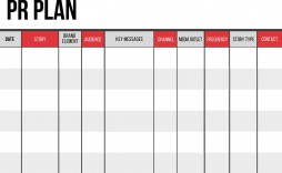 005 Outstanding Public Relation Strategy Plan Template Image  Example