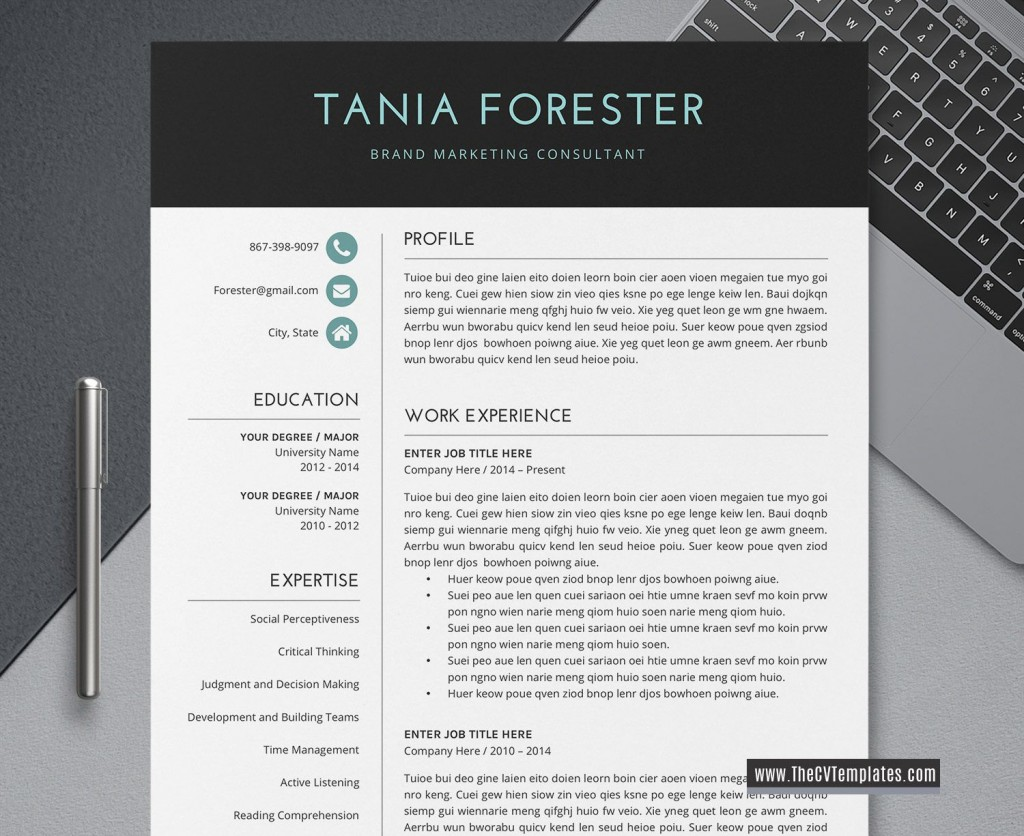 005 Outstanding Simple Professional Cv Template Word High Definition Large