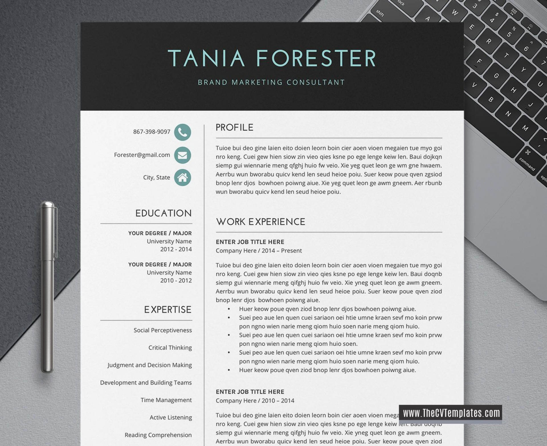 005 Outstanding Simple Professional Cv Template Word High Definition 1920