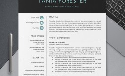 005 Outstanding Simple Professional Cv Template Word High Definition