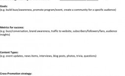 005 Outstanding Social Media Strategy Template Pdf Example  Sample Content