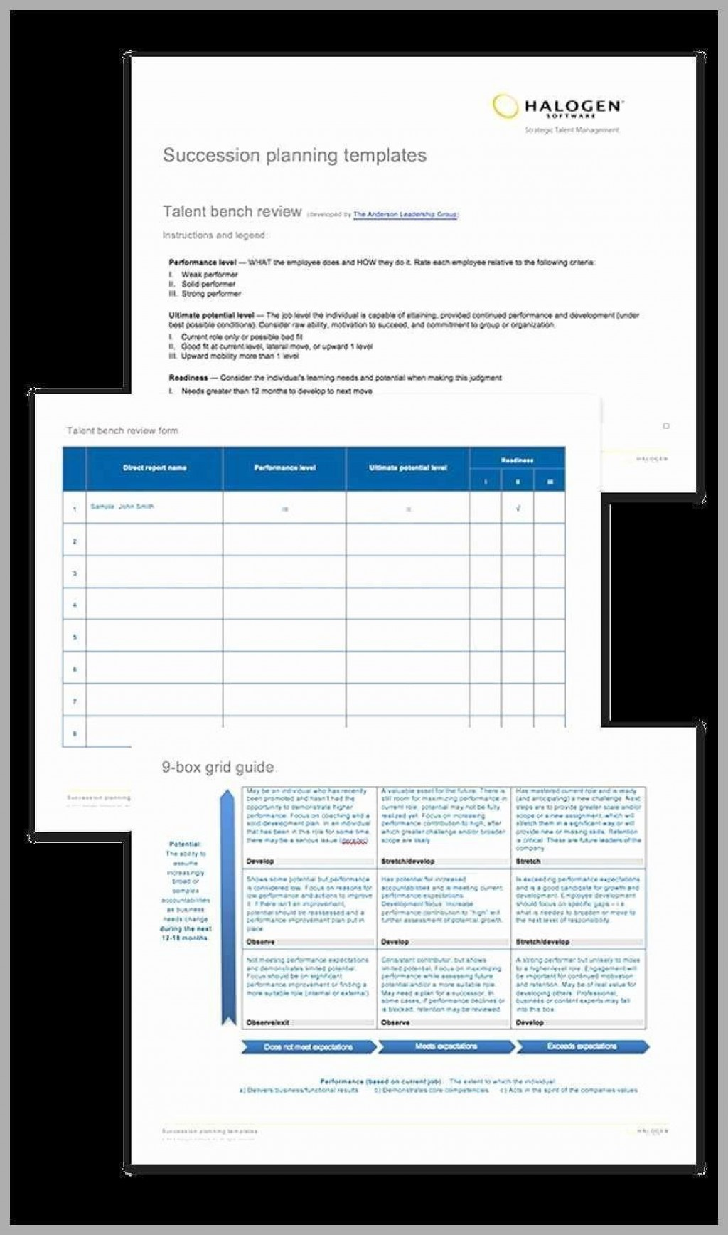 005 Outstanding Succession Planning Template Excel Concept  Free MLarge