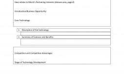005 Phenomenal Executive Summary Report Word Template Example