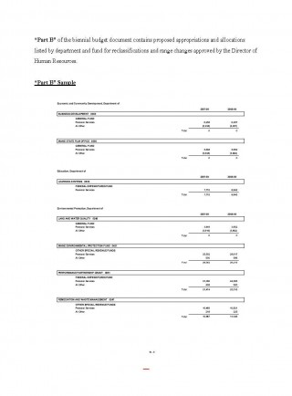005 Phenomenal Line Item Budget Sample Photo  Church For Grant Proposal Format320