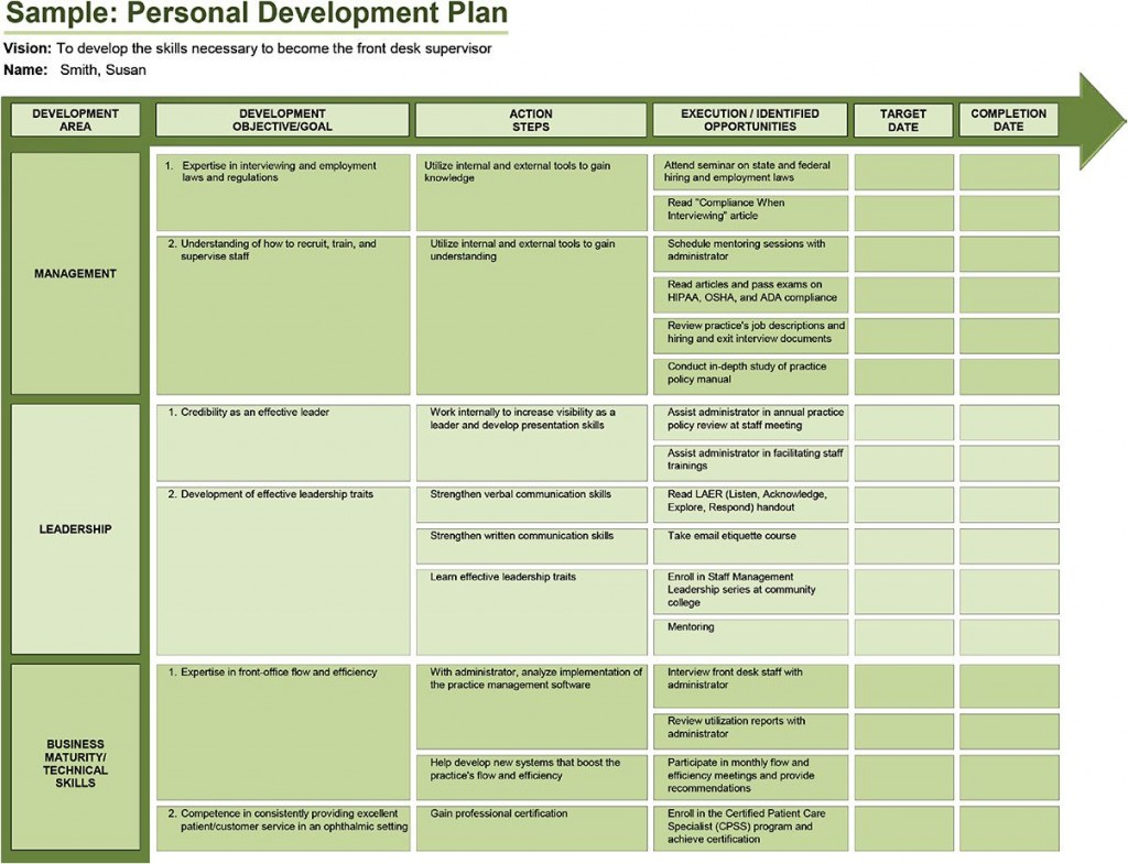 005 Rare Professional Development Plan Template For Employee High Definition  Example SampleLarge