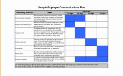 005 Remarkable Internal Communication Plan Template Concept  Free Pdf Example