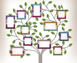 005 Sensational Family Tree For Baby Book Template Inspiration  Printable320