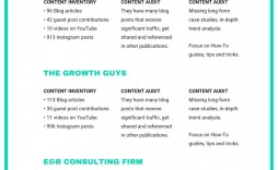 005 Sensational Music Marketing Plan Template Free Download Highest Clarity