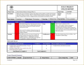 005 Sensational Project Management Report Template Free Example  Word Weekly Statu Excel320