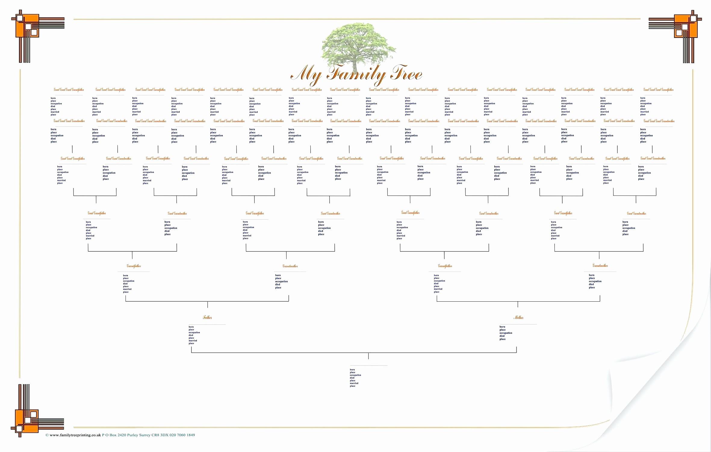 005 Shocking 7 Generation Family Tree Template Inspiration  Blank Free EditableFull