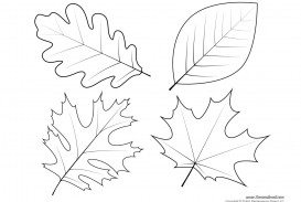 005 Shocking Leaf Template With Line High Definition  Fall Printable Blank