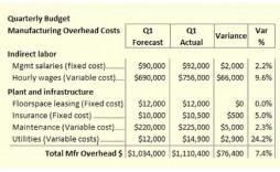 005 Shocking Sample Line Item Budget Format Concept