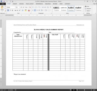 005 Shocking Weekly Sale Report Template Highest Clarity  Free Download Call Example Xl320