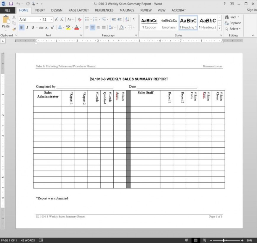 005 Shocking Weekly Sale Report Template Highest Clarity  Free Download Call Example Xl868