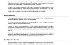 005 Stirring Freelance Web Developer Proposal Template Concept