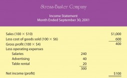 005 Striking Monthly Income Statement Format Excel Sample  Free Download