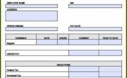 005 Surprising Free Pay Stub Template Excel Example  Canada