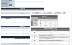 005 Surprising Project Risk Management Plan Template Word Inspiration