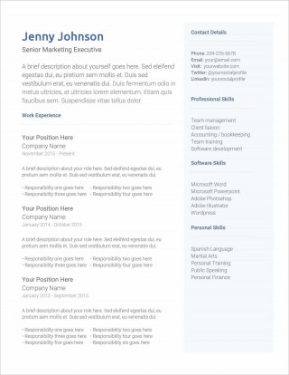 005 Top Professional Cv Template Free Online Photo  Resume320