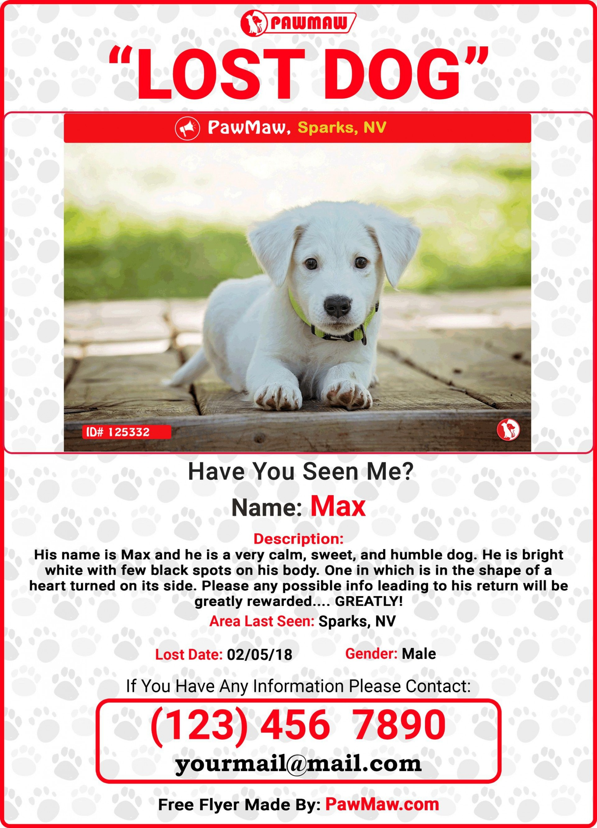 005 Unforgettable Lost Dog Flyer Template Sample  Printable Free Missing Pet1920
