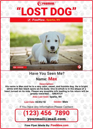 005 Unforgettable Lost Dog Flyer Template Sample  Printable Free Missing Pet320