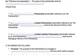 005 Unique Busines Partnership Contract Template Concept  Agreement Free Nz Word