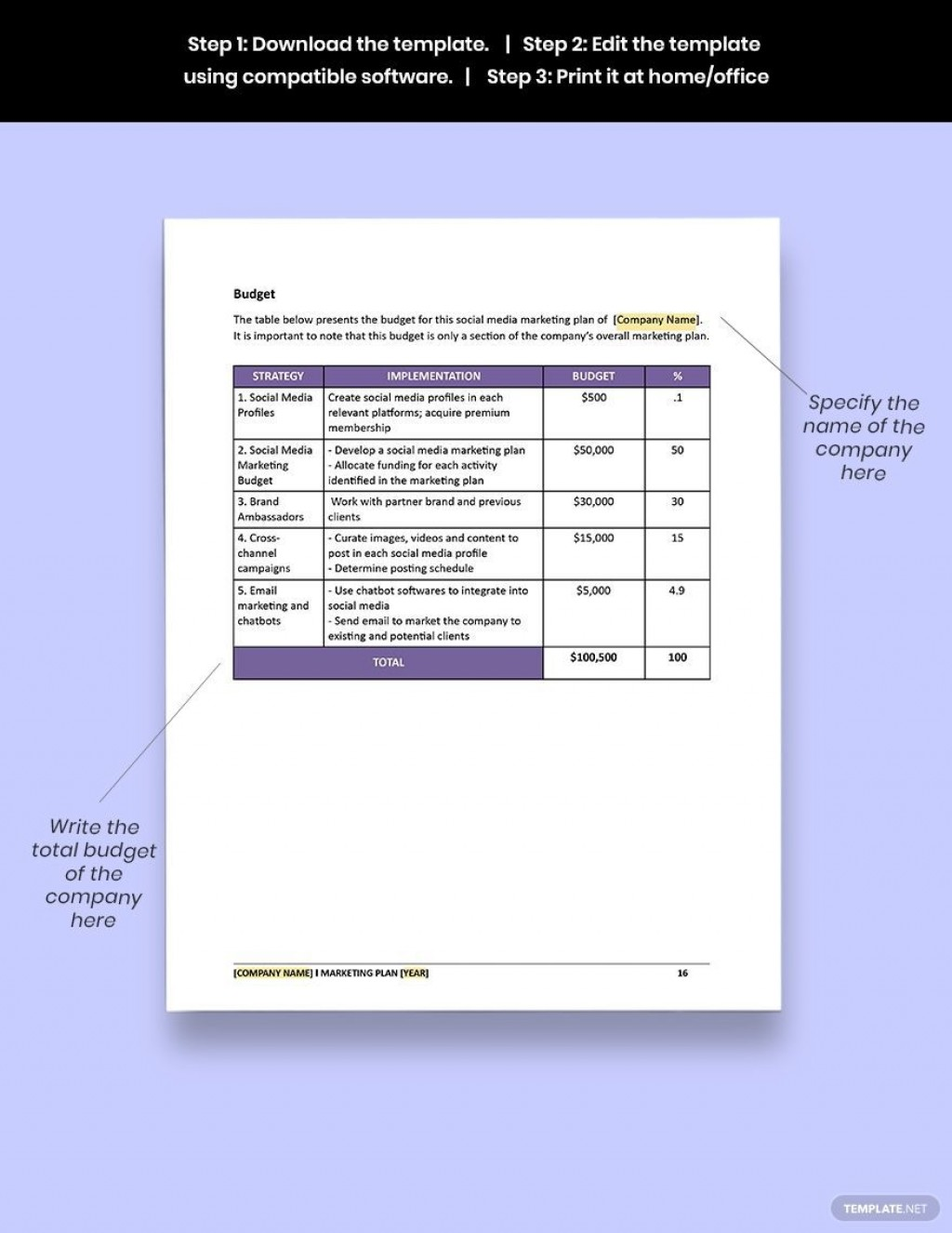 005 Unusual Social Media Marketing Plan Template Doc High Definition Large