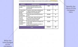 005 Unusual Social Media Marketing Plan Template Doc High Definition