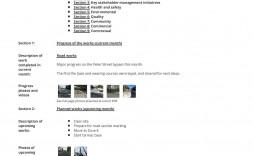 005 Wondrou Project Management Monthly Progres Report Template Photo