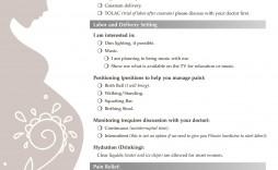006 Astounding Printable Birth Plan Template Design  Editable Pdf Free