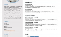 006 Astounding Professional Resume Template Free Download Word Image  Cv 2020 Format With Photo