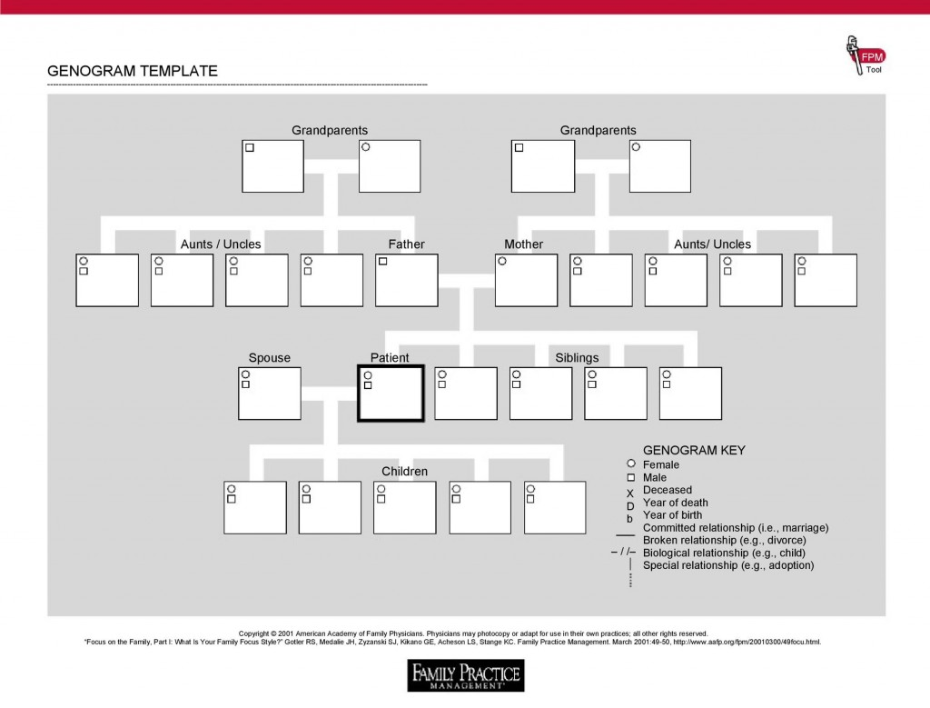 006 Awesome Family Medical History Genogram Template Picture Large