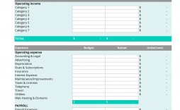 006 Beautiful Simple Line Item Budget Template Concept