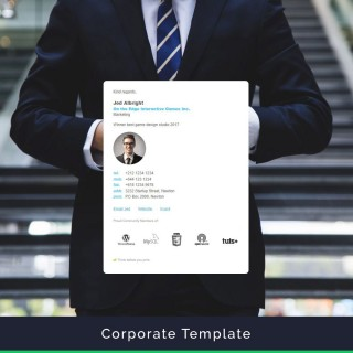 006 Best Professional Email Signature Template High Resolution  Busines Download320