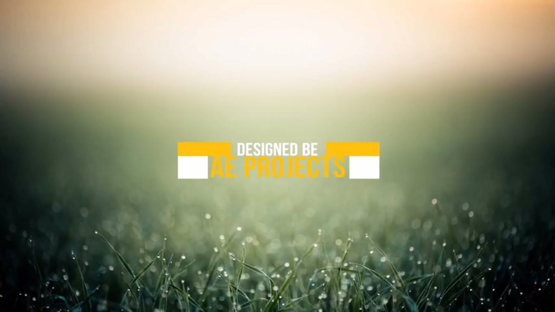 006 Dreaded Adobe After Effect Free Template High Definition  Templates Title Wedding Project Logo1920