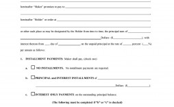 006 Fantastic Loan Promissory Note Template High Resolution  Ppp Form Personal Format Student
