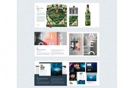 006 Fascinating In Design Portfolio Template Inspiration  Free Indesign A3 Photography Graphic Download