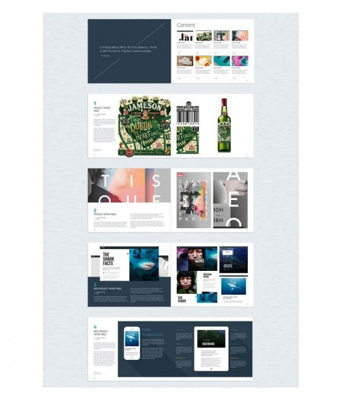 006 Fascinating In Design Portfolio Template Inspiration  Free Indesign A3 Photography Graphic Download480